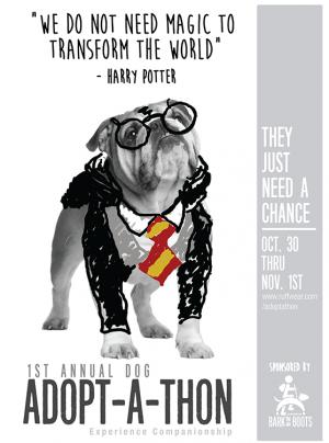 BarkNBoots-Poster-HarryPotter